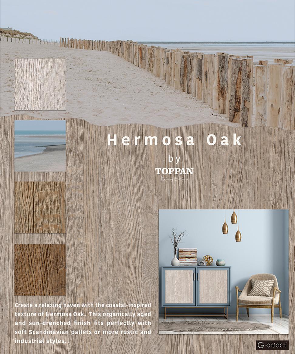 Hermosa Oak_13.5x16.2_72dpi